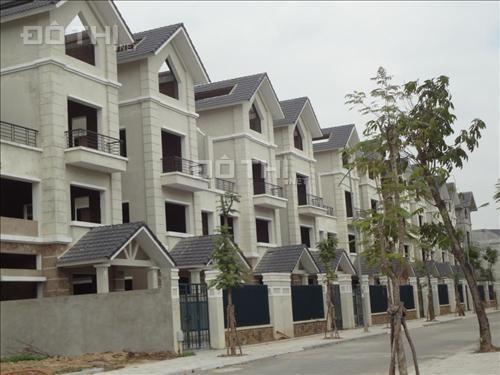 Cần cho thuê gấp 2 căn biệt thự liền nhau, mặt tiền 12m.01259131268
