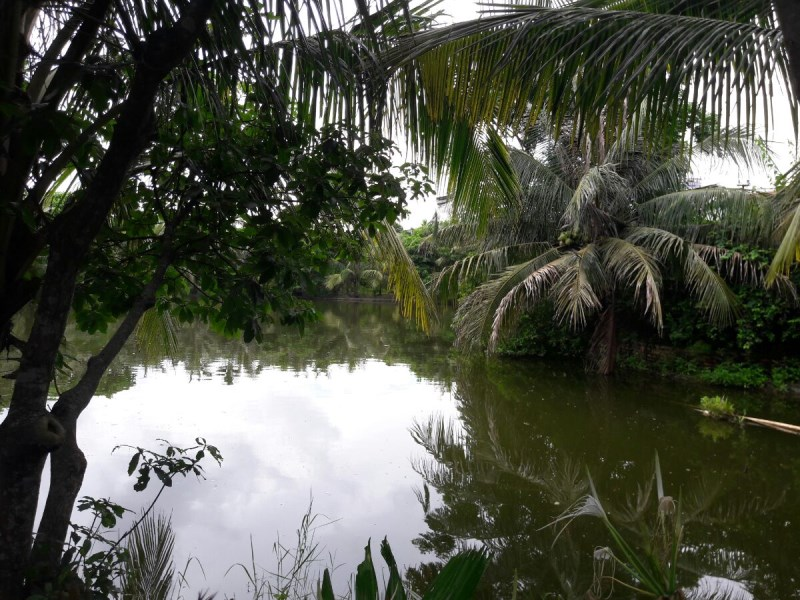 Chuyển nhượng 2,2ha đất trang trại, sinh thái, Hải An,  giá  800.000 vnđ/m2 lh 0981912889