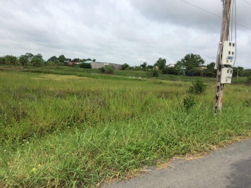 Đất làm trang trại rau sạch 995m2, Bình Chánh, sổ riêng, LK cao tốc, giá dưới 2 tỷ