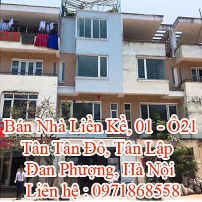 Bán Nhà Liền Kề, 01 - Ô21, Tân Tân Đô, Tân Lập, Đan Phượng, Hà Nội