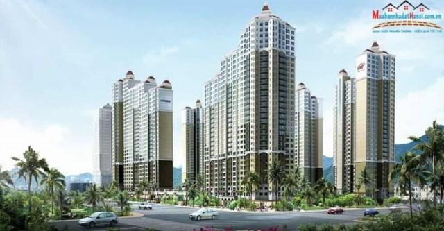Cần cho thuê hoặc bán căn hộ tòa TT01 - HyunDai Hà Đông, Hà Nội