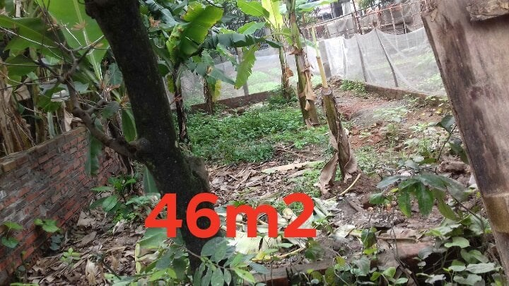 CHủ Nhà Bán Lô 46m2 Cổ Bi, Gia Lâm, Giá 1,3 tỷ