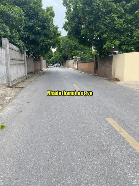 Bán đất mặt đường 131 Thôn Đan Tảo, Xã Tân Minh, Huyện Sóc Sơn, Hà Nội