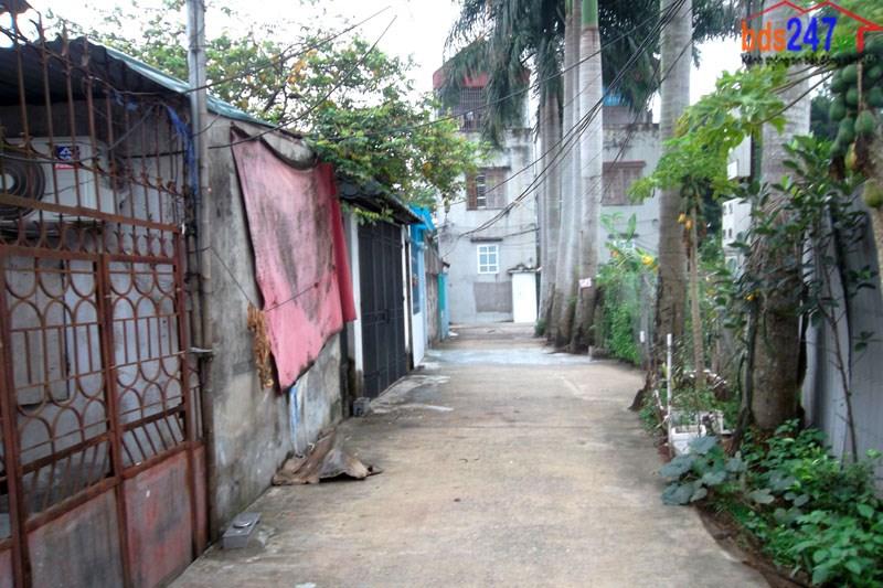 Bán đất có nhà cấp 4 hiện đang cho thuê tại ngõ Việt Hà 1, Cầu Noi, Cổ Nhuế