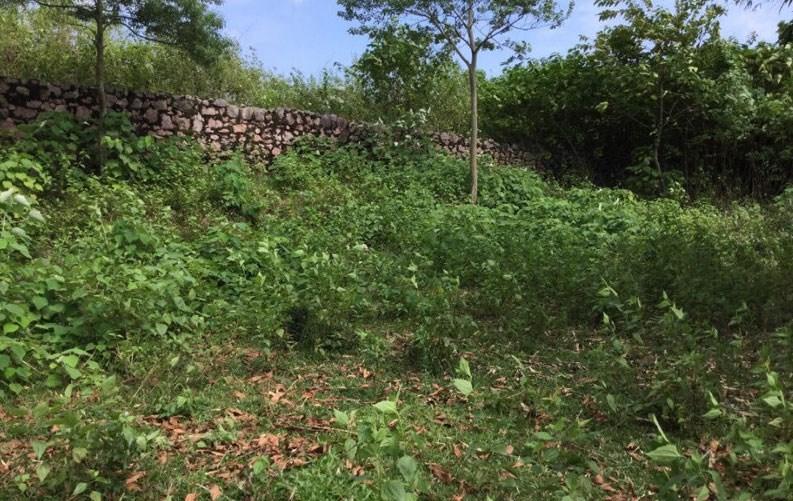 Chính chủ cần bán thửa đất tại thôn Đồng Âm, Xã Đông Xuân, Quốc Oai, Hà Nội